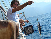 catch a fish -                                                 there are fishing lines                                                 on every boat