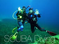 SCUBA diving Blue Cruise